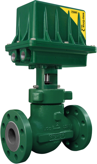 Fisher D4 Valve