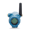 rosemount 705 wireless totalizing transmitter